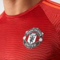 Manchester United maglia allenamento UCL 2015/16 Adidas